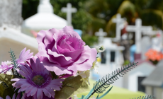 Your Simple Guide to Finding the Right Funeral Plan